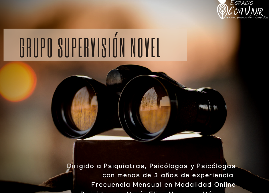 Grupo Supervisión Novel